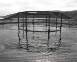 Reti antiuccello per acquacoltura
